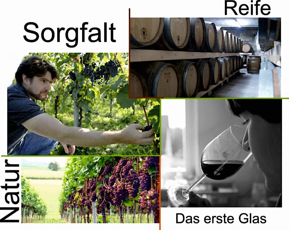 Weinmacher
